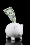 Million dollar saving. Piggy bank with a Million Dollar note, isolated on black Stock Image
