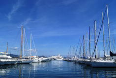 Million dollar yachts. Numerous yachts in the Port of Saint Tropez royalty free stock photography