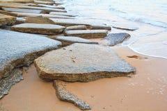 75 Million Jahre alte versteinerte Shell Stockbilder