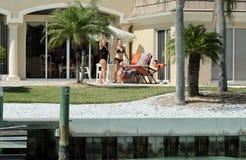 Millionaire Homes, Bird Key, Sarasota Florida. Millionaire Homes along Bird Key, Sarasota, Florida royalty free stock image