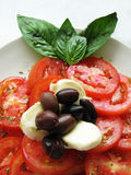 Milliseconde de mozzarella de tomate Image stock