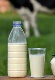 Millk bottle Stock Images