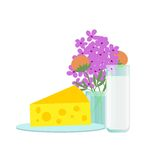 Millk and cheese Royalty Free Stock Photos