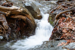 Millomeris waterfall. In Troodos Mountains Royalty Free Stock Images