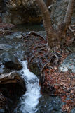 Millomeris waterfall. In Troodos Mountains Royalty Free Stock Image