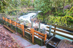 Millrace  in old grist mill,Washington,usa. Stock Image