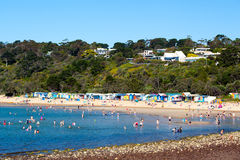 Mills Beach in Mornington Stockbild