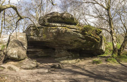 Millstone grit formation at Brimham Rocks in Yorkshire, England. Unusual rock formation at Brimham Rocks, North Yorkshire, England, UK on a sunny earlly Spring Stock Photo
