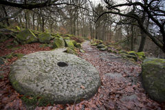 Millstone in woods Stock Photos