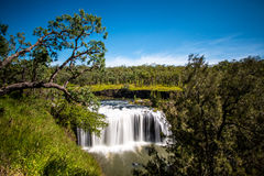 Millstream Falls. Falls Atherton Tablelands, far north Queensland, Australia stock images