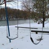 Milou balance dans la neige images stock