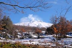 Milou Etna Volcano Steaming, Sicile photos libres de droits