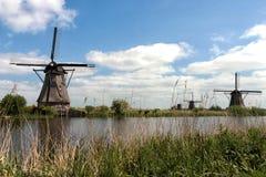 Mils στις Κάτω Χώρες Στοκ Εικόνα