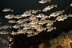 Milstein Hall de la vie 1 d'océan Images libres de droits