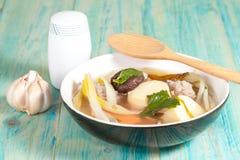 Milt kryddad soppa som som består av griskött, tofu, royaltyfri foto