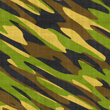 Miltary camo Stock Photo