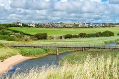 Milton Ley Nature Reserve Devon du sud Images libres de droits