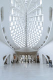 Milwaukee Art Museum Royaltyfri Foto