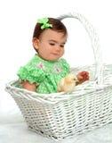 Mim e galinha amarela fotografia de stock