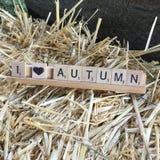 Mim outono do coração Imagem de Stock Royalty Free