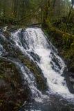 Mima Falls Arkivbilder