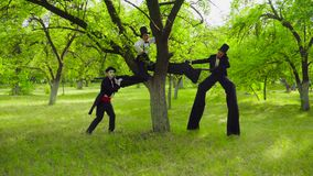 Mima i ulicy artyści błaź się wokoło w parku zdjęcie wideo