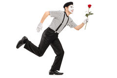 Mime artist running and holding a rose flower Stock Photos