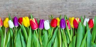 Mime día al ` s del día y de la tarjeta del día de San Valentín del ` s, tulipanes hermosos Foto de archivo