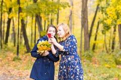 Mime a mostrarle las fotos del adolescente en el teléfono móvil al aire libre en naturaleza del otoño Imagenes de archivo