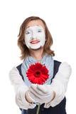 Mimicar Artist com flor vermelha - Gerber foto de stock royalty free