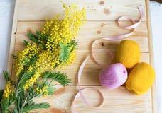 Mimosa με μια ρόδινη σπείρα κορδελλών και νημάτων Στοκ Εικόνες