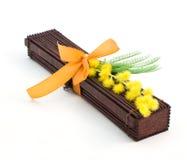 mimosa японца подарка Стоковые Фотографии RF