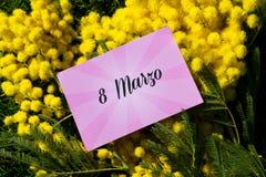 Mimosa Photo stock