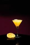 mimosa Imagens de Stock
