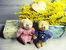 Mimosa arbusto mola amarela fundo cartão floral do 8 de março Imagens de Stock Royalty Free