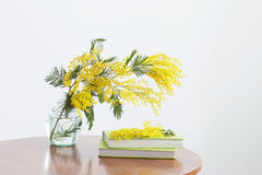 Mimosa and books in jar Royalty Free Stock Image