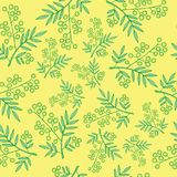 Mimosa branches seamless pattern. Cartoon and doodle styled back. Ground for fabric, print and textile design. Vector illustration Royalty Free Stock Photos