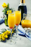 Mimosa cocktail. Two glasses with mimosa cocktail cave plus orange juice royalty free stock photography