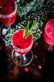 Mimosa del arándano de la Navidad fotografía de archivo