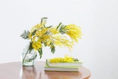Mimosa e libri in barattolo immagine stock libera da diritti