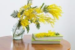 Mimosa e libri sulla tavola immagini stock libere da diritti