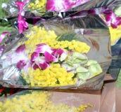 Mimosa ed orchidea gialle per il giorno delle donne Fotografie Stock Libere da Diritti