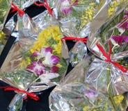 Mimosa ed orchidea per il giorno delle donne Immagine Stock
