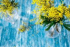 Mimosa en el florero de cristal en mofa de la opinión de sobremesa para arriba imagen de archivo libre de regalías
