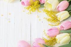 Mimosa et tulipes sur le fond en bois blanc Image libre de droits