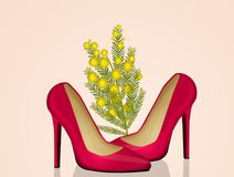 Mimosa flower in the female shoes Stock Images