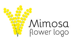 Mimosa flower logotype. Perfect logo for flower shop, beauty salon or cosmetician shop Royalty Free Stock Photography
