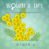 Mimosa flower for Women's Day Royalty Free Stock Images