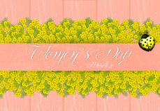 Mimosa flower for Women's Day Stock Image