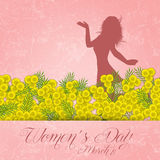 Mimosa flower for Women's Day Royalty Free Stock Image